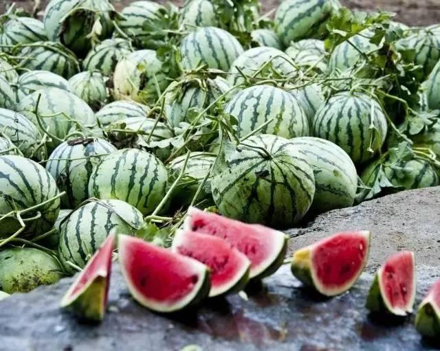 气候再热,老外都很少吃西瓜,为何我们吃这么多西瓜?