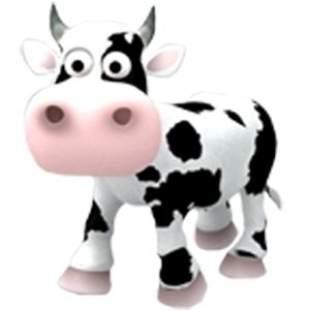 cow英语
