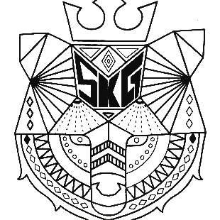 舞力特区SKG战队