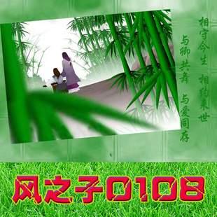 风之子0108