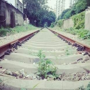 2016上海火车迷