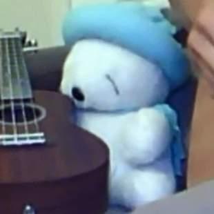 小白的吉他教室