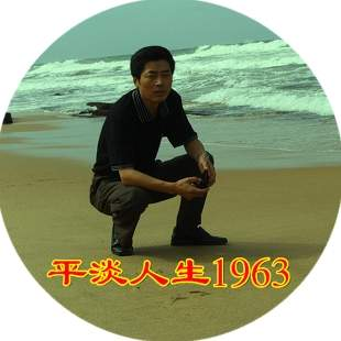 平淡人生1963