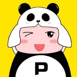 熊猫侠解说