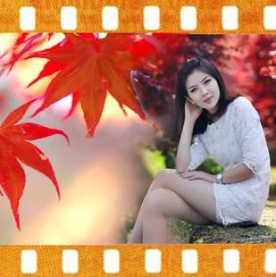香山红叶影视
