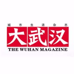 大武汉新媒体