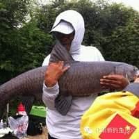 钓鱼视频学院