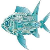 网鱼说科技