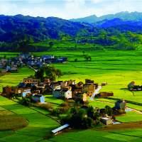 走遍美丽乡村