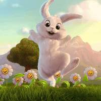 兔兔爱视频