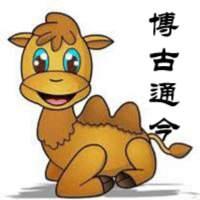 博古通今的骆驼