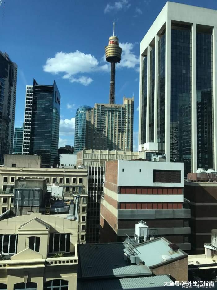 澳大利亚悉尼(新州)驾照更换指南-更新 2