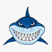 鲨鱼哥游戏解说