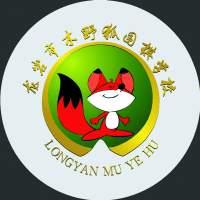 龙岩木野狐围棋