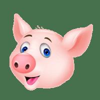 开心小猪奇趣乐园