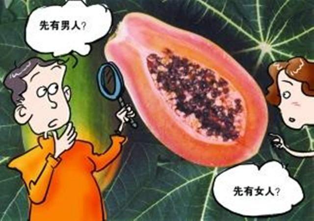 人类历史上先有男人还是先有女人?答案竟在木瓜里!