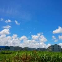 江湖留影录