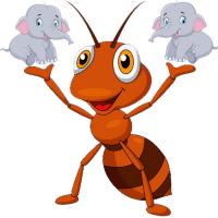 蚂蚁扛大象