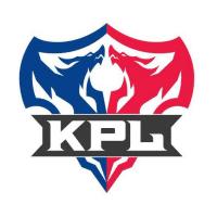 王者荣耀职业联赛KPL
