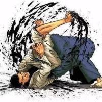 威尔的巴西柔术课