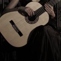古典吉他不在线
