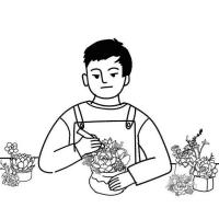 小植物baba讲堂