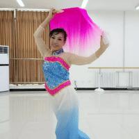 美舞广场舞