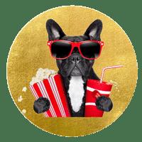 狗老板说电影