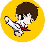 蒋老师说跆拳道