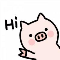 一头凌乱的猪