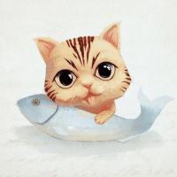 三文鱼动漫