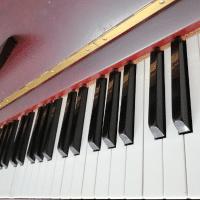 爱玩乐器的刘老师