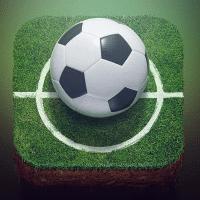 Wfball足球