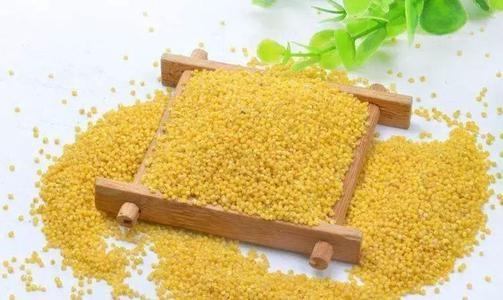 如何把小米粥熬得米水分明?学会这一招轻轻松松搞定
