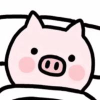 懒猪新资讯