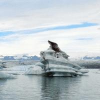 冰川下的流水