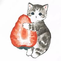 猫猫影视咖