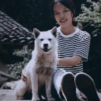 田园犬巡游记