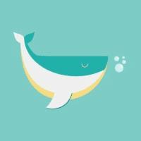 鲸鱼LOVE分享