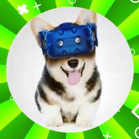 VR玩家老雷