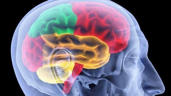 科學家發現,人死亡後仍能感知聲音,臨終告別要謹言慎行