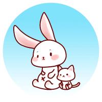 兔子的小喵