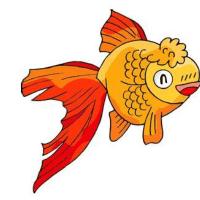 大鱼用户1542184987656337