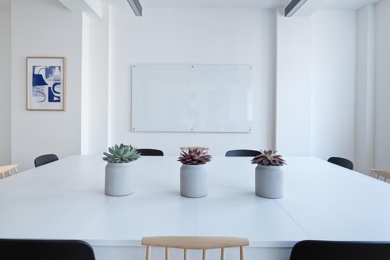 植物扦插成活率高, 分享4种常见的扦插方式