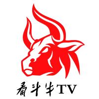 看斗牛TV