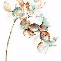 张翠翠的世界