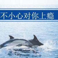 大鱼用户1546651880701753