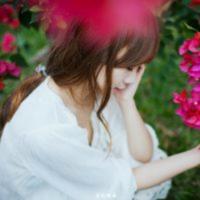 黎明村的玫瑰