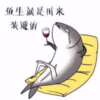 大鱼用户1536156337310152
