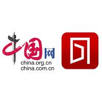 中国网国情